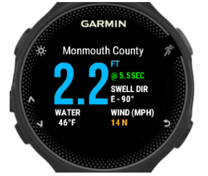 Garmin_Wave Scout